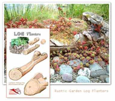 Planting Troughs and log planters