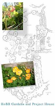 garden design a la HoBB