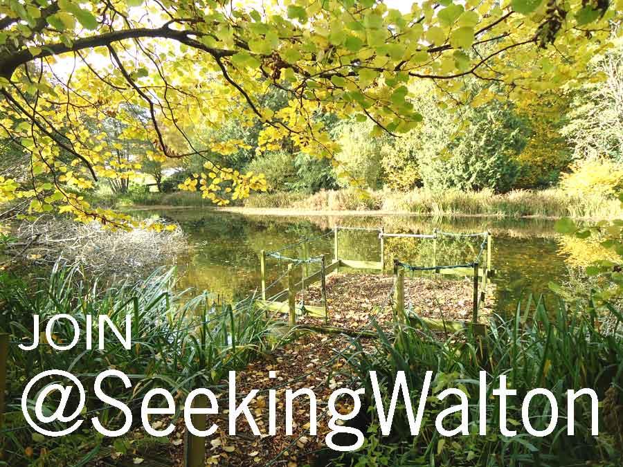 SeekingWalton