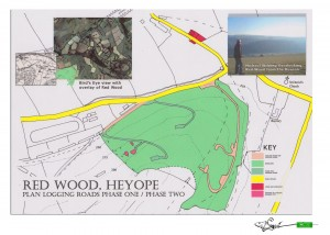 woodland-management-map